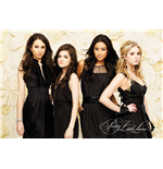 ポスター Pretty Little Liars 253559