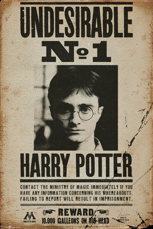 Harry Potter Undesirable No 1 Maxi Poster