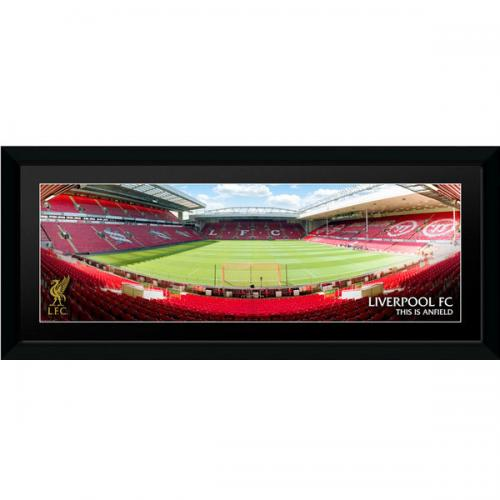 Liverpool F.C. Picture Anfield 30 x 12