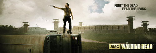 The Walking Dead Prison Door Poster