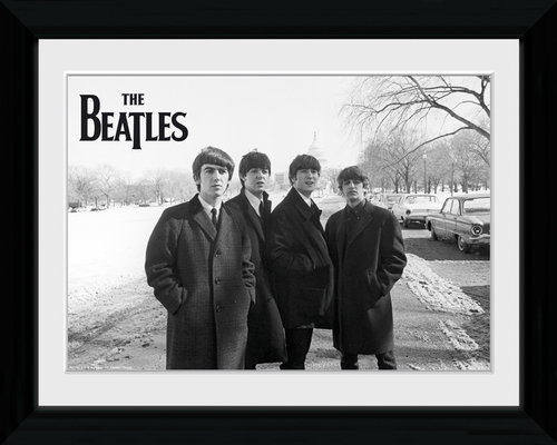 The Beatles Capitol Hill Collector Print