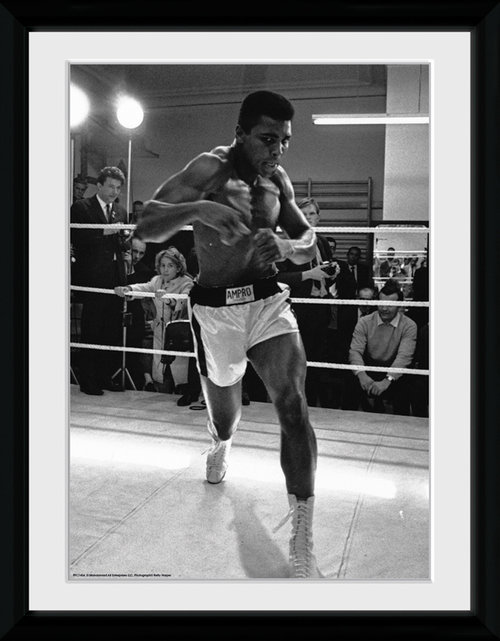 Muhammad Ali Shadow Box Framed Collector Print