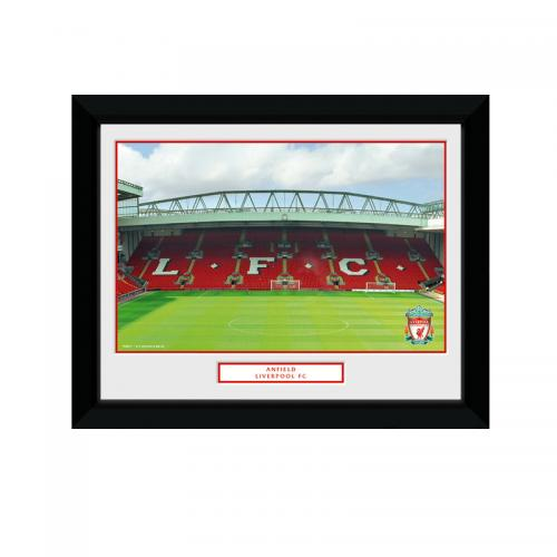Liverpool F.C. Picture Anfield 8 x 6