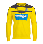 2015-2016 Newcastle Home Goalkeeper Shirt (Yellow)