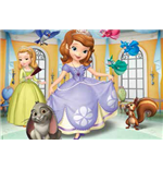 Sofia the First Puzzles 143028