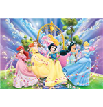 Princess Disney Puzzles 143088