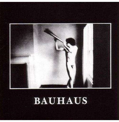 Vynil Bauhaus - In The Flat Field