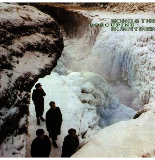 Vynil Echo & The Bunnymen - Porcupine