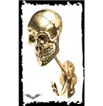 Clothes hook skull golden-colored