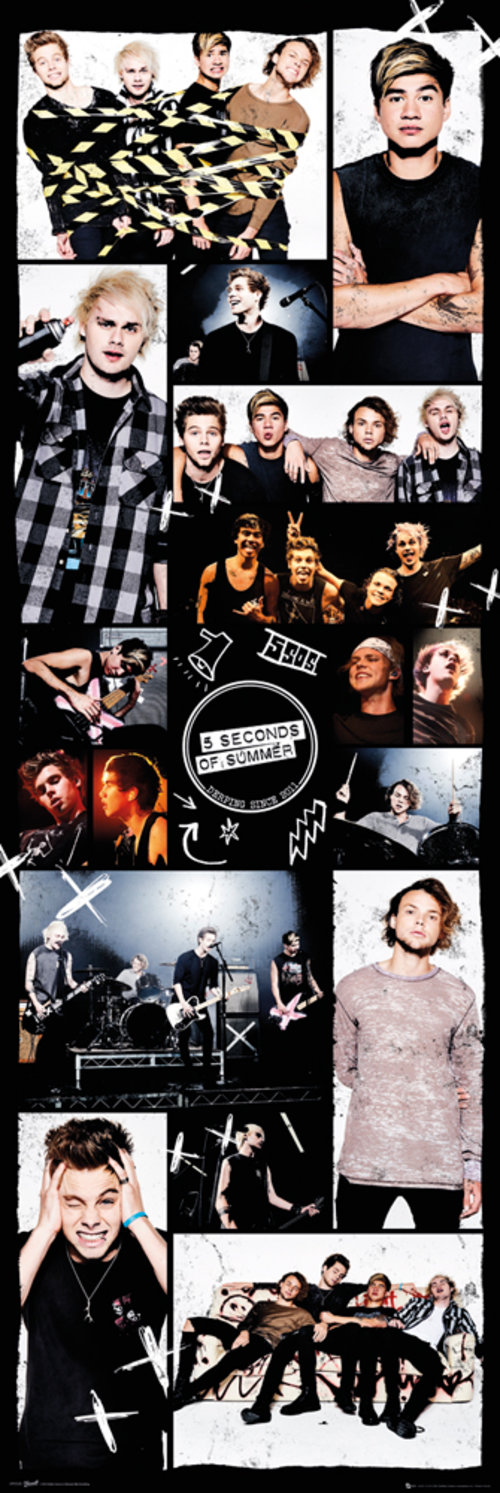 5 Seconds of Summer Grid 2 Door Poster