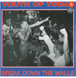 Vynil Youth Of Today - Break Down The Walls