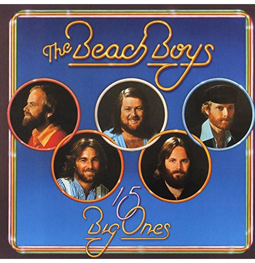 Vynil Beach Boys (The) - 15 Big Ones