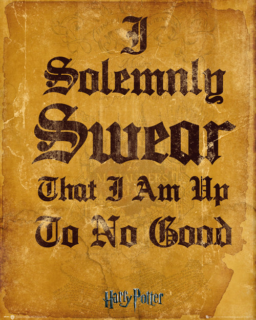 Harry Potter I Solomnly Swear Mini Poster