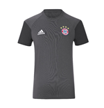 2016-2017 Bayern Munich Adidas Training Tee (Granite) - Kids