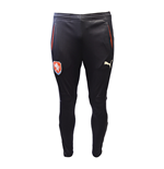 2016-2017 Czech Republic Puma Training Pants (Navy)