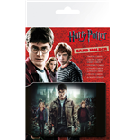 Harry Potter Accessories 212572