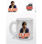 Big Bang Theory Mug 214593