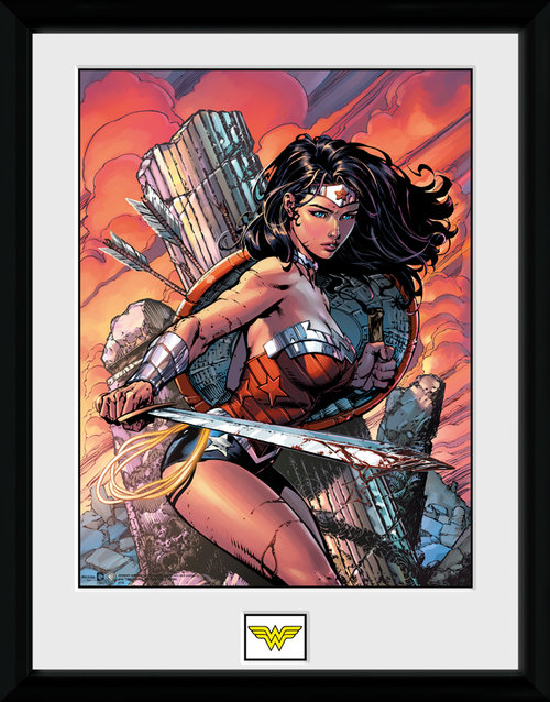 Wonder Women Sword Framed Collector Print