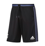2016-2017 Real Madrid Adidas Training Shorts (Black)