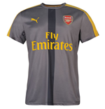 2016-2017 Arsenal Puma Training Jersey (Grey)