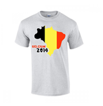 Belgium 2014 Country Flag T-shirt (grey)