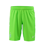 2016-2017 Inter Milan Nike Third Shorts (Green)