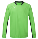 Puma Spirit Goalkeeper Shirt (Green)