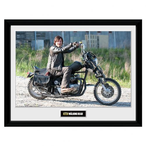 The Walking Dead Picture Daryl 16 x 12