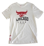 Chicago Bulls T-shirt 247618