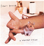 Vynil Sonic Youth - A Thousand Leaves (2 Lp)