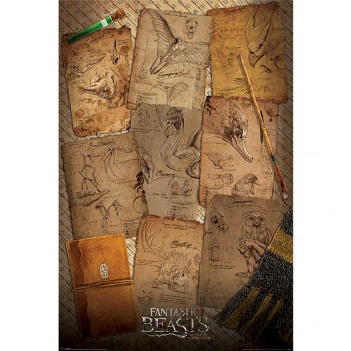 Fantastic Beasts Poster Notebook 280