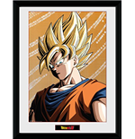 Dragon ball Frame 252602