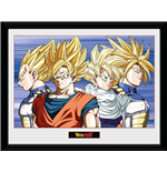 Dragon ball Frame 252603