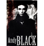 Andy Black Poster 253152