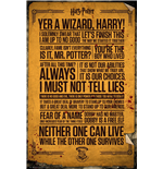 Harry Potter Poster - Quotes - 61x91,5 Cm