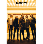 Blossoms Poster 254117