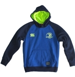 Leinster Sweatshirt 254892