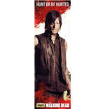 The Walking Dead Door Poster Daryl - 53x158 Cm