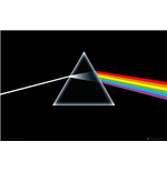 Pink Floyd Poster 254989