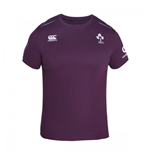 2016-2017 Ireland Rugby Cotton Training Tee (Irish Plum)