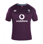 2016-2017 Ireland Rugby Superlight Poly Training Tee (Plum)