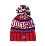 Spiderman Cap 258089