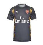 2016-2017 Arsenal Puma Stadium Jersey (Yellow-Peacot)