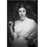 Star Wars Poster 262951