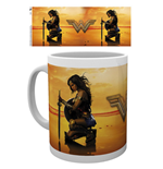 Wonder Woman Mug - Kneel