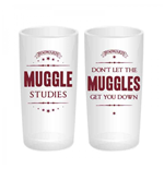 Harry Potter Glassware 266331