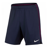 2017-2018 Man City Nike Squad Training Shorts (Navy) - Kids