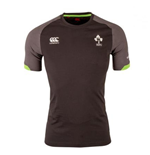 2017-2018 Ireland Rugby Cotton Training Tee (Tap Shoe)