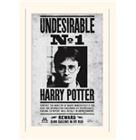 Harry Potter Print 271774