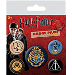 Harry Potter Pin 271781